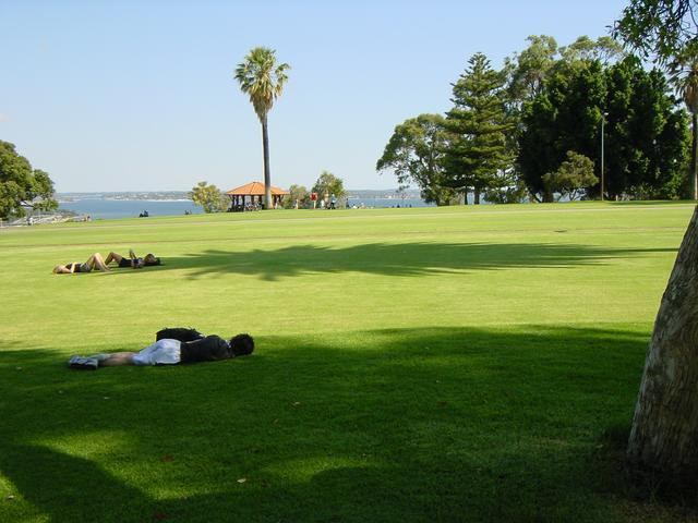 Peaceful people in Kings Park
