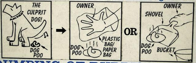 How to clean a dog's business