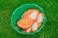 ING in the bin