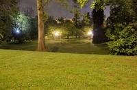 Kinnekswiss at night