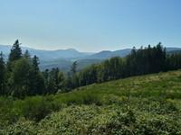 Vosges landscape