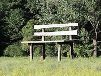 Giant Bench