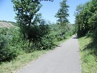 Cycle path along the Moselle river (south side)