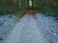 Frozen bicycle path from Leudelange to Bettembourg.